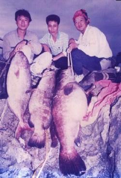 基隆嶼釣起的大石斑與大牛港